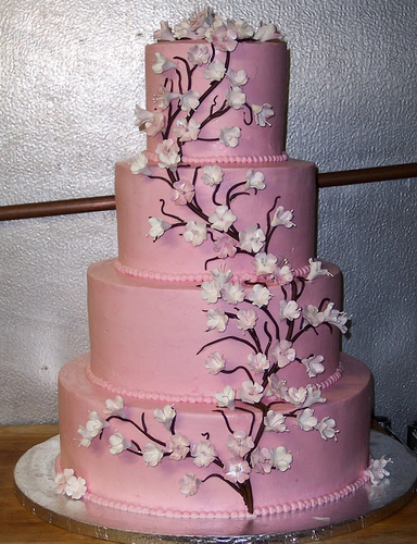 Which Cake - Dusty Pink Wedding Cake